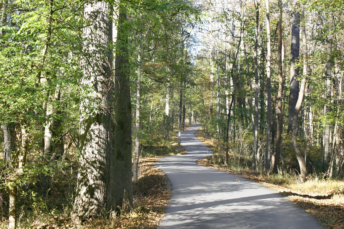 Powder Mill Road - Chapel Hill, NC